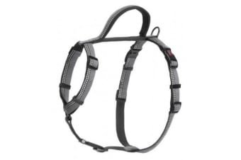 The Company Of Animals HALTI Walking Harness (Black)