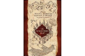 Harry Potter Marauders Map Poster (Multicoloured) (One Size)