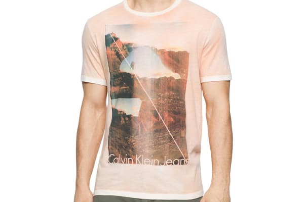 Calvin Klein Jeans Men's Valley Girl Crew Neck Tee (Lily, X-Large)