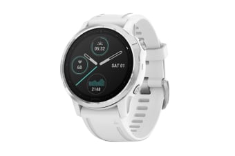 Garmin Fenix 6S (White and White)