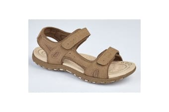 PDQ Ladies/Womens Twin Touch Fastening Sandals (Dark Taupe)