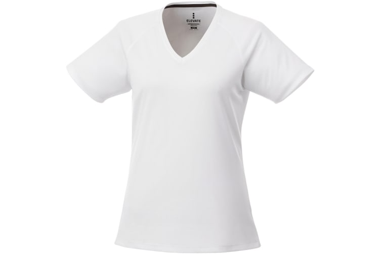 Elevate Womens/Ladies Amery Short Sleeve Cool Fit V-Neck T Shirt (White) (L)