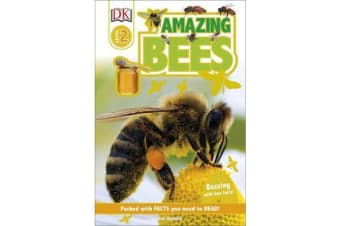 Amazing Bees - Buzzing with Bee Facts!