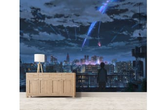 3D Your Name 075 Anime Wall Murals Woven paper (need glue), XL 208cm x 146cm (WxH)(82''x58'')