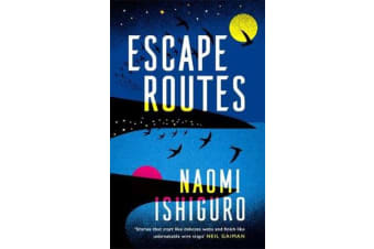 Escape Routes - 'A writer whose voice I hope to be following for many years to come' Rowan Hisayo Buchanan