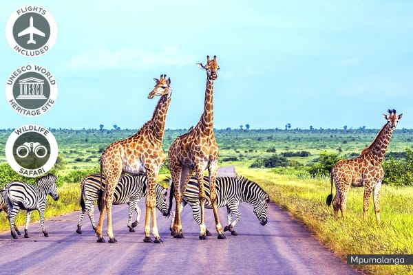 AFRICA: 10 Day South African Safari with Victoria Falls Including Flights For Two