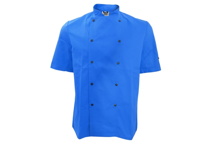Dennys Unisex Short Sleeve Stud Button Chef Jacket (Royal) (S)