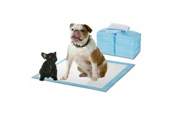 PawZ New 200pcs 60x60cm Puppy Pet Dog Indoor Cat Toilet Training Pads Absorbent