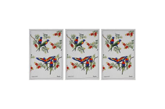 3x Maxwell & Williams Birdsong Kitchen Clean Dishcloth Cotton Tea Towel Lorikeet