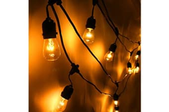 Festoon String Light