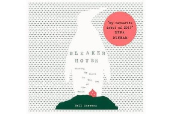 Bleaker House - Chasing My Novel to the End of the World