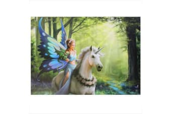 Anne Stokes Realm of Enchantment Canvas Plaque (Multicoloured)