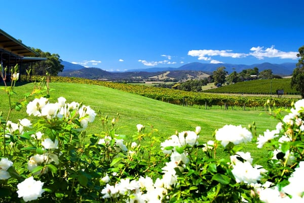 YARRA VALLEY: 2 Nights at Balgownie Estate Vineyard Resort & Spa for Two (One Bedroom Spa Suite)