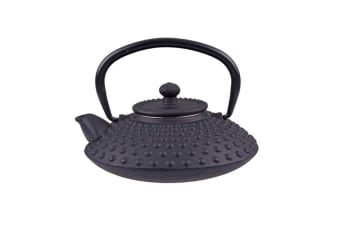 Teaology Japanese Style Cast Iron Teapot 500ml Tea Pot Leaf Filter Hobnail Black