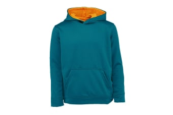 Champion Boys' Solid Performance Pullover Hoodie (Real Teal)