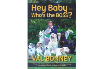 Hey Baby - Who's The Boss? - Val Bonney - Book