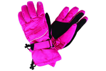 Dare 2b Womens/Ladies Summon II Ski Gloves (Pink Fusion) (L)
