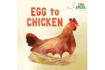 Life Cycles - Egg to Chicken
