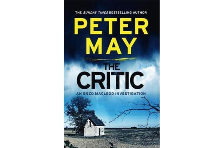 The Critic - A tantalising cold-case murder mystery (Enzo 2)