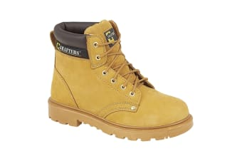 Grafters Mens Apprentice 6 Eye Safety Toe Cap Boots (Honey)