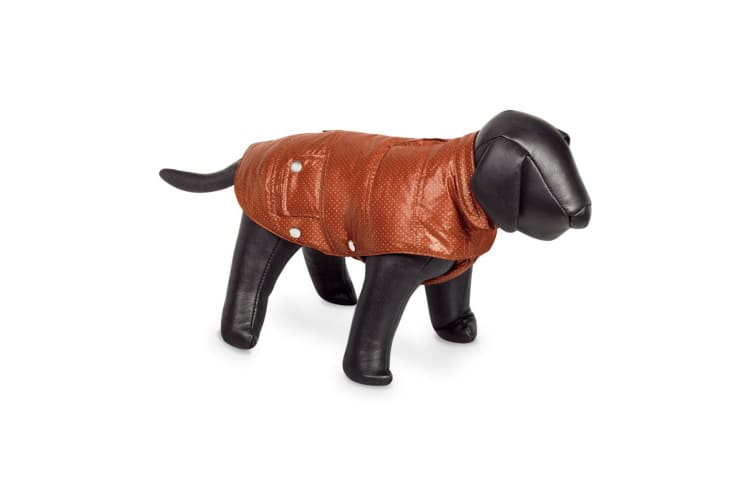 Nobby Danika Dog Coat (Orange) (48cm)