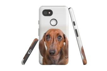 For Google Pixel 2 XL Case  Protective Back Cover  Red Dachshund