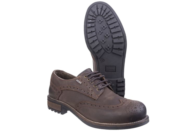 Cotswold Mens Oxford Lace Up Shoes (Brown) (9 UK)