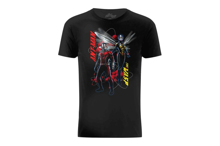 Ant-Man And The Wasp Mens Characters Pose T-Shirt (Black) (S)