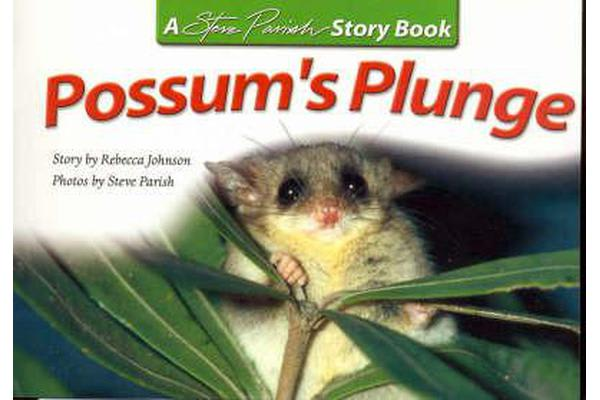 Possums Plunge
