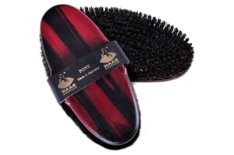 Haas Pony Body Brush (Black/Red) (One Size)