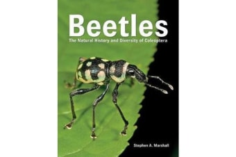 Beetles 2018 - The Natural History and Diversity of Coleoptera