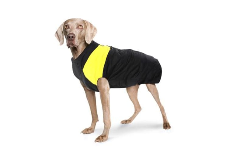 Dog jacket padded waterproof Pet Clothes Super Warm YELLOW L