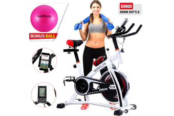 Norflex Spin Bike Exercise Ball Flywheel Fitness Commercial Home Workout Gym W