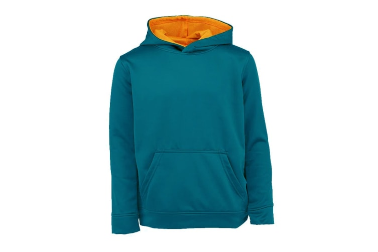 Champion Boys' Solid Performance Pullover Hoodie (Real Teal, Size M)