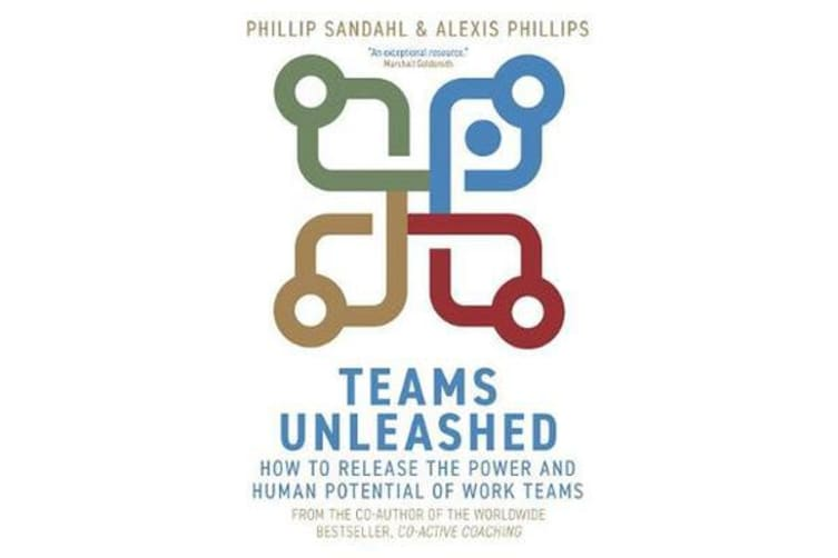 Teams Unleashed - How to Release the Power and Human Potential of Work Teams