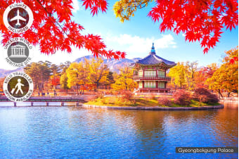 EAST ASIA: 14 Day South Korea & Japan Tour Including Flights for One or Two