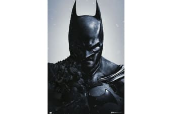 Batman Arkham Poster (Black) (One Size)