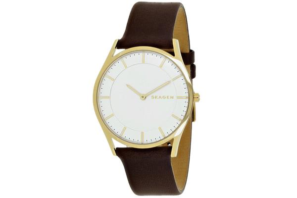 Skagen Men's Holst (SKW6225)