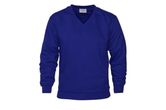 Absolute Apparel Mens V Neck Sweat (Royal)