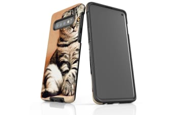 For Samsung Galaxy S10 Case  Armour Tough Cover  Sitting Cat