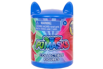 PJ Masks Blind Figures in Capsule