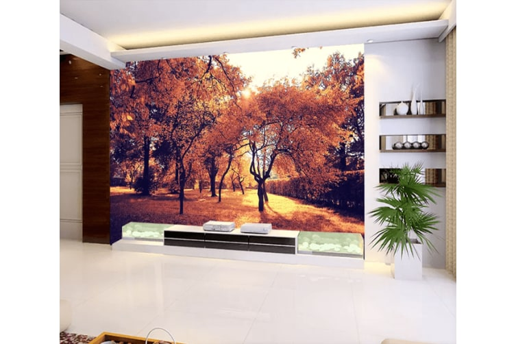 3D Forest Shadow 1215 Woven paper (need glue), XL 208cm x 146cm (WxH)(82''x58'')