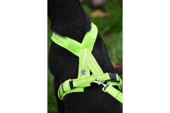 Woofmasta Flashing Hi-Viz Dog Harness (Fluorescent Yellow)