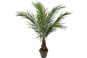 Artificial Pin Palm In Pot