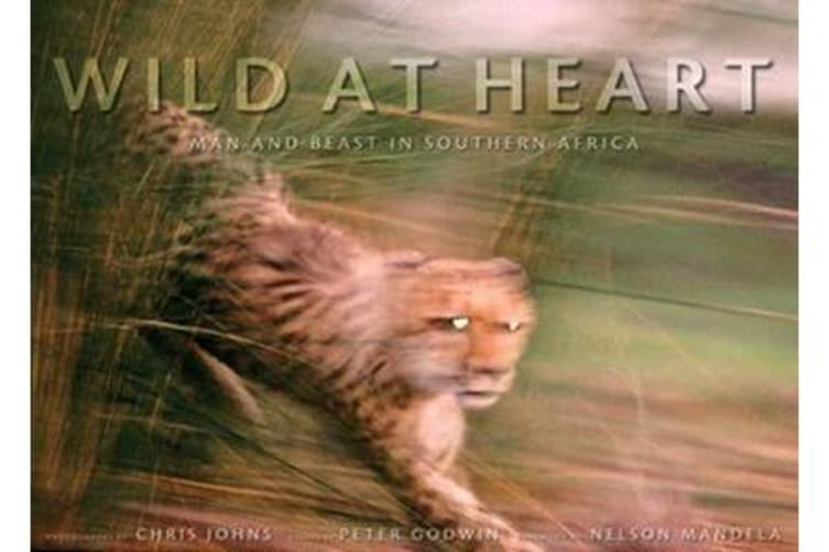 Wild at Heart - Mam and Beast in Southern Africa