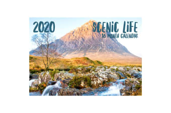 Scenic Life 2020 Rectangle Wall Calendar 16 Months New Year Christmas Decor Gift