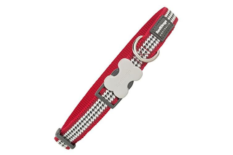 Red Dingo Fang It Dog Collar (Red) (M)