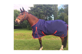 Masta TEX Basic 200g Turnout Rug With Standard Neck (Navy Blue) (5 ft 9)