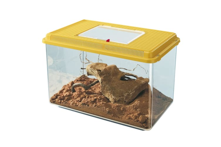 Ferplast Geo Plastic Tank (Assorted Colours) - ASRTD (Assorted) (Small)