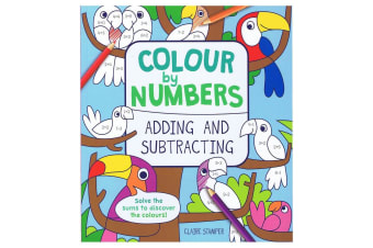 Colour By Numbers Adding and Subtracting